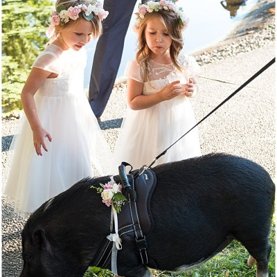Flower Girls play with miniature pig at wedding cocktail hour | Whimsical and Romantic Wedding at DeLille Cellars | Wedding Planning & Design by Perfectly Posh Events | Wedding Photos by Barbie Hull Photography | Wedding Flowers by Floressence | #perfectlyposhevents