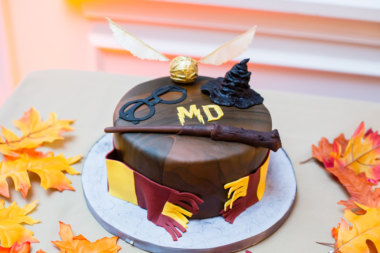 detail shot of harry potter groom's cake