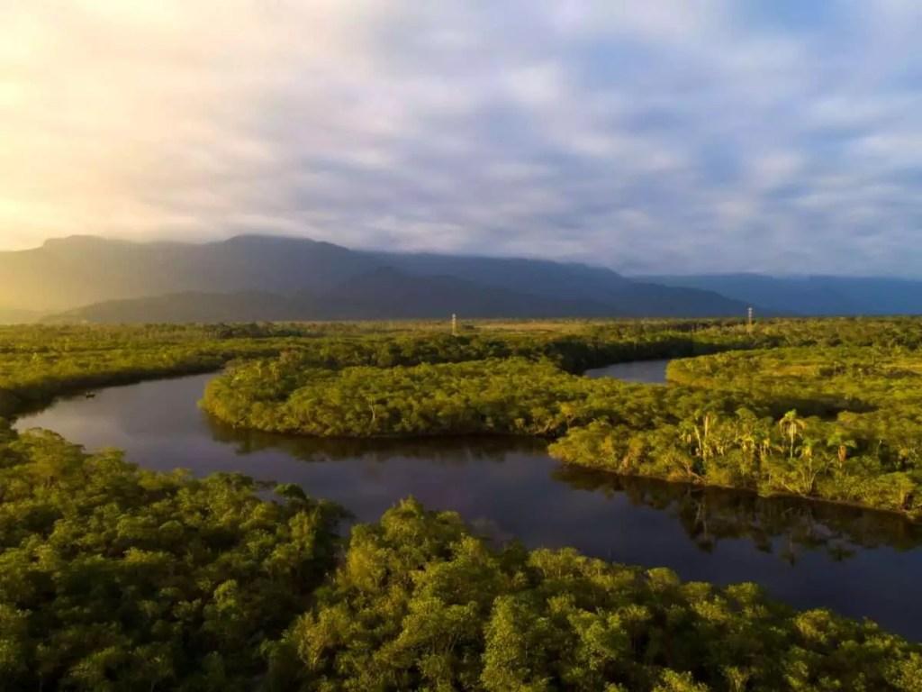 Global Importance of Amazon