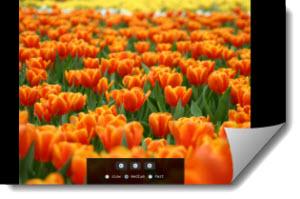Google Image Slideshow, visualizar imágenes en diapositivas
