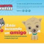 Mascota Social – red social para los dueños de mascotas