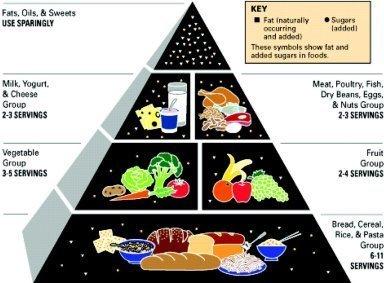 Five Food Groups Hierarchy Australia