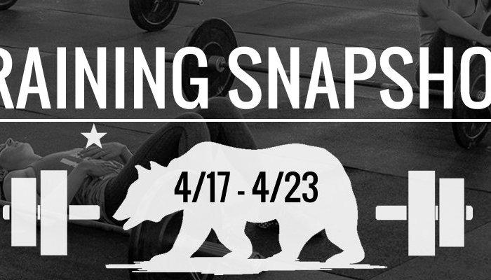 training_snapshot_4_17_17