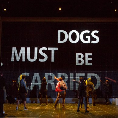 CURIOUS INCIDENT Is One Interpretation of the Spectrum