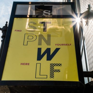 Steppenwolf Rebrands Visual Presence