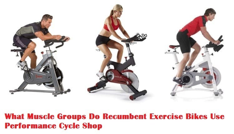Infographic – What Muscle Groups Do Recumbent Exercise Bikes Use?