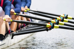 esprit d'équipe en entreprise : ramer dans le même sens et à la même allure