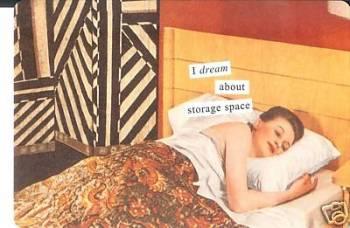 anne-taintor-storage