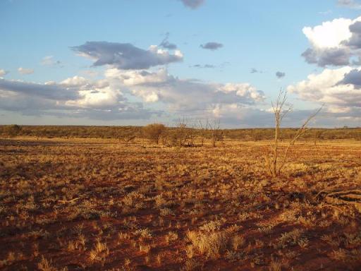 Passarelle Tommi Sooni desert_plain FreeAussieStock