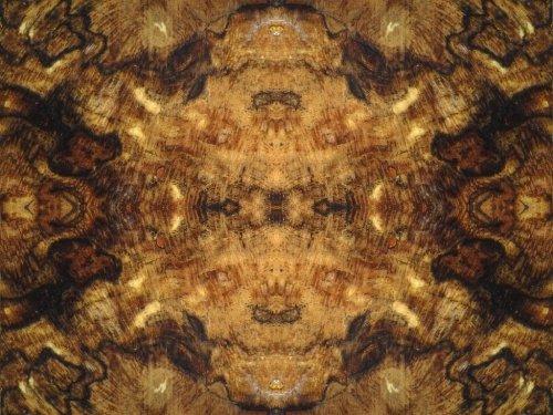Bronte Wing Prayer tree_root tuneduptronix DeviantArt