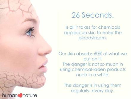 26 seconds chemicals absorb skin