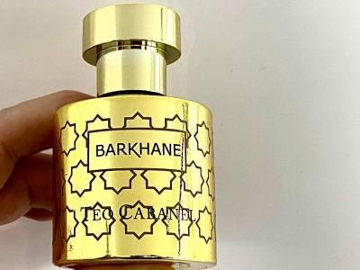 Barkhane by Teo Cabanel
