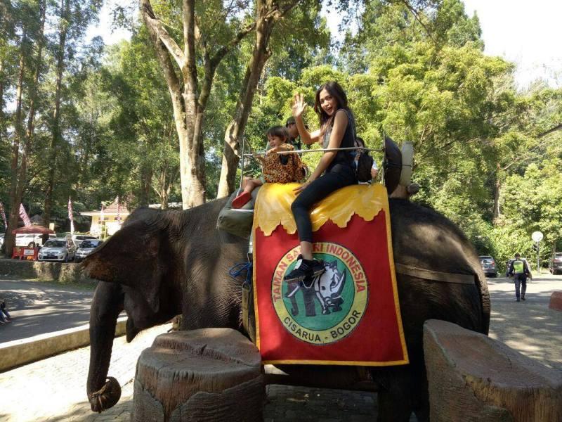 Salah satu tempat wisata di Cisarua yang populer adalah Taman Safari via @taman_safari
