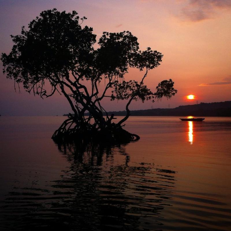 Menyongsong matahari di Teluk Terima Sumberklampok, Buleleng, Singaraja via @dwioblo