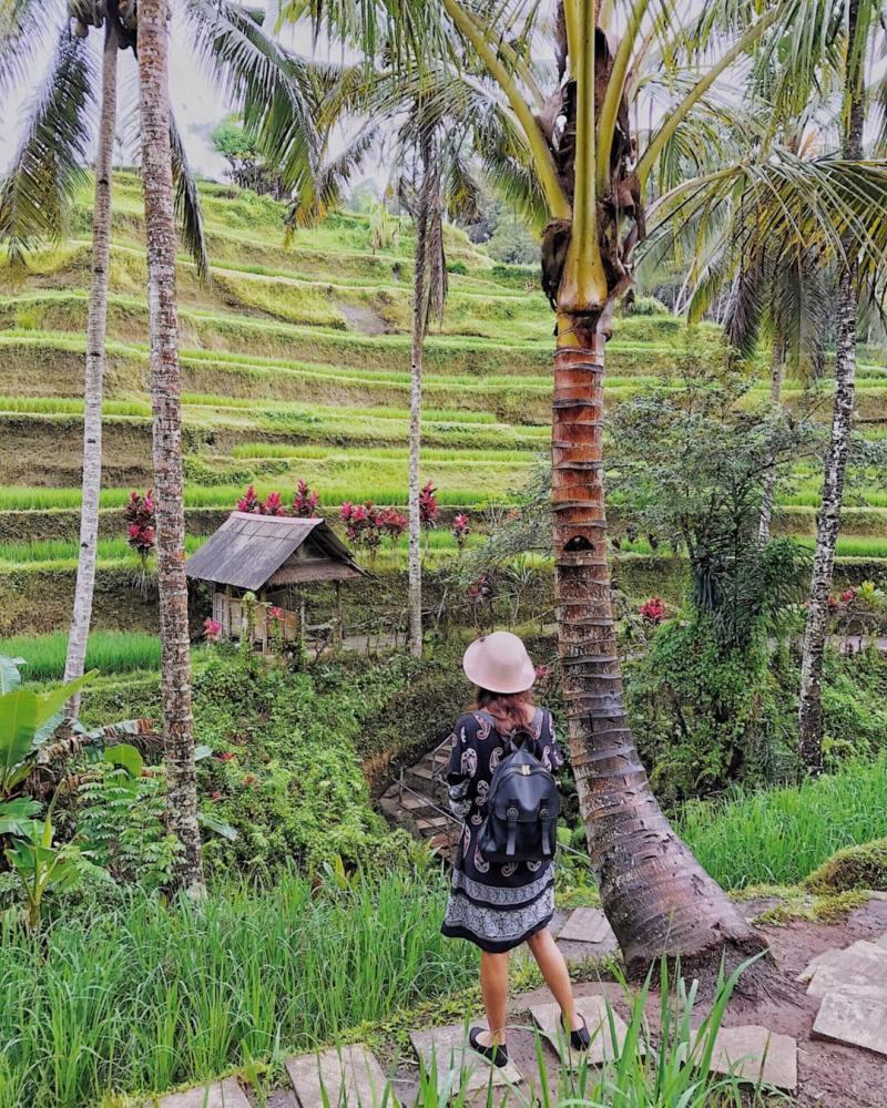 Tegallalang adalah tempat sempurna untuk menyegarkan diri via @lifeandash