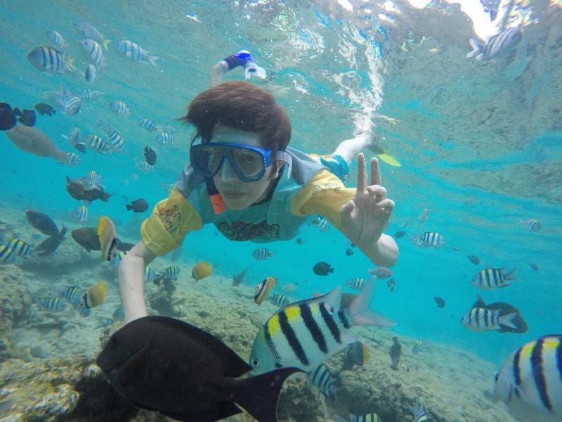 Keindahan bawah laut Pulau Sabang juga layak untuk dinikmati! via @liyounglie