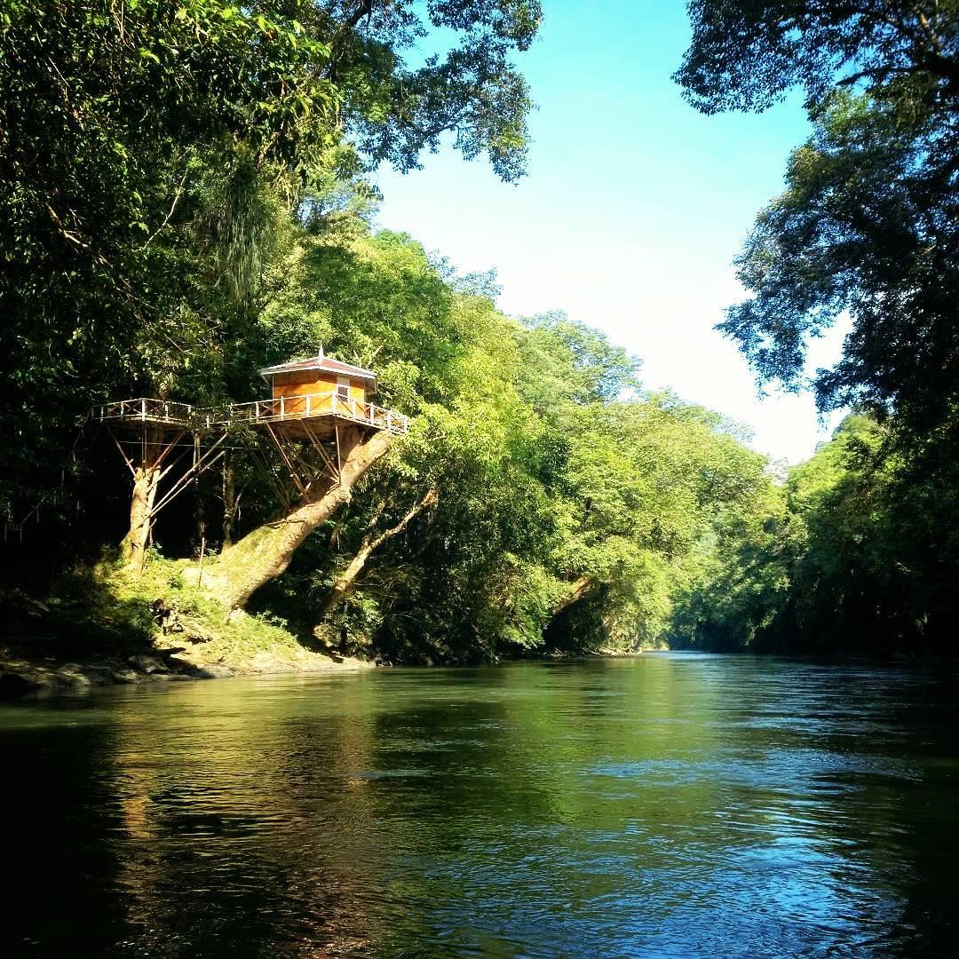 Taman Nasional Betung Kerihun, merupakan taman nasional yang letaknya di Putussiabu, propinsi Kalimantan Barat! via @bagusfox
