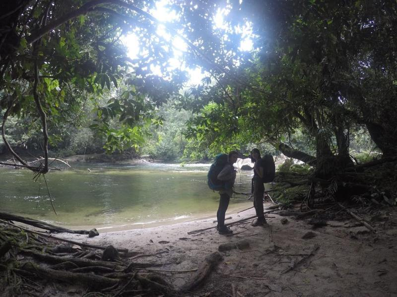 Taman Nasional Bukit Baka Bukit Raya adalah salah satu dari 50 taman nasional yang terdapat di Indonesia.
