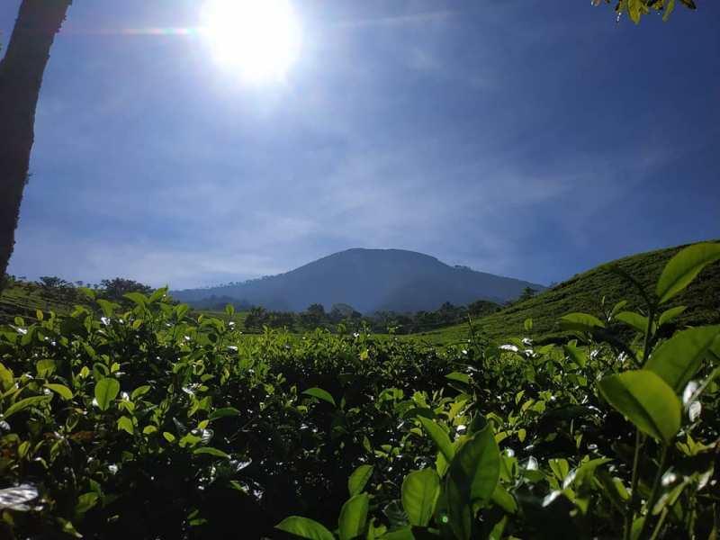 Daftar Tempat Wisata Di Blitar Jawa Timur Lengkap, Gunung Butak Blitar