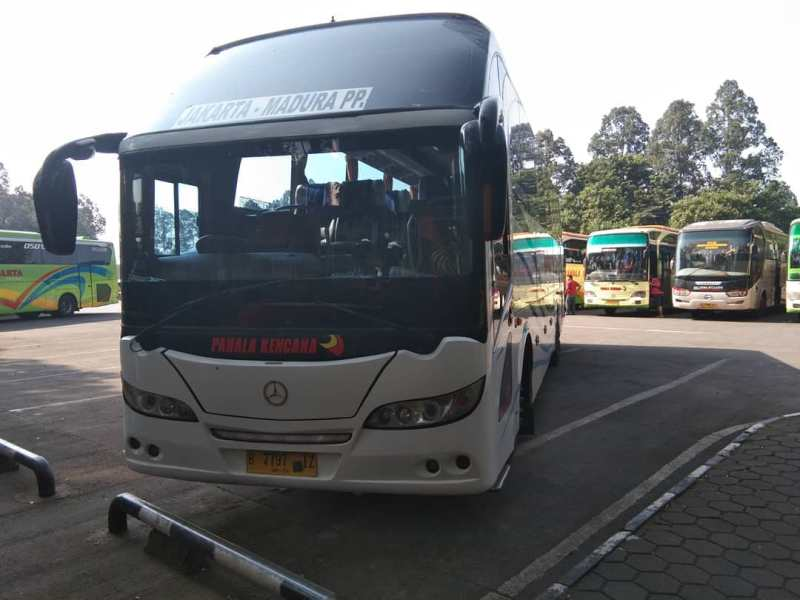 Tiket Bus Pahala Kencana Online Info Rute Bus Pahala Kencana