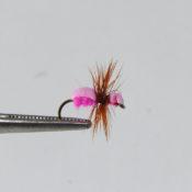 Pieni pinkki muurahaisperho