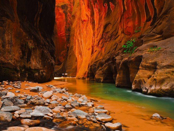 Perierga.gr - Zion National Park