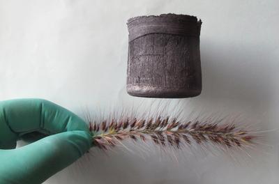 perierga.gr - Το ελαφρύτερο υλικό του κόσμου ισορροπεί σε ένα λουλούδι!