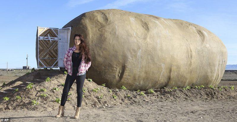 Perierga.gr - Διαμέρισμα σε σχήμα πατάτας!