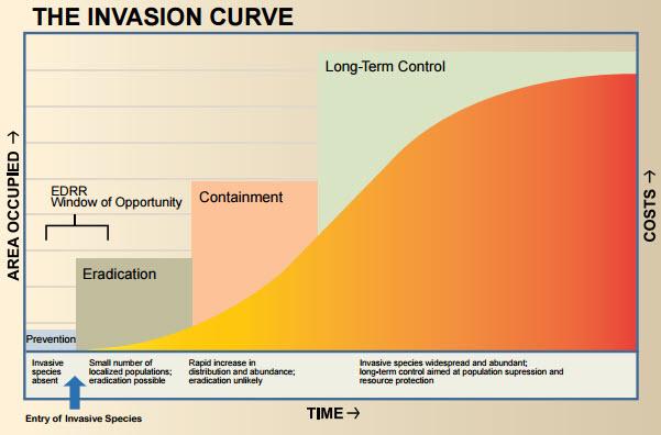 impactos-economicos-prevencion-control-poblaciones-invasiones-biologicas-economia