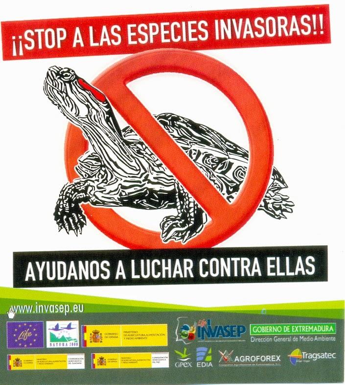 stop-invasoras-prevencion-control-erradicacion-sensibilizacion-educacion-medioambiental-ecologia-ecologismo-invasiones-biologicas-especies-exoticas