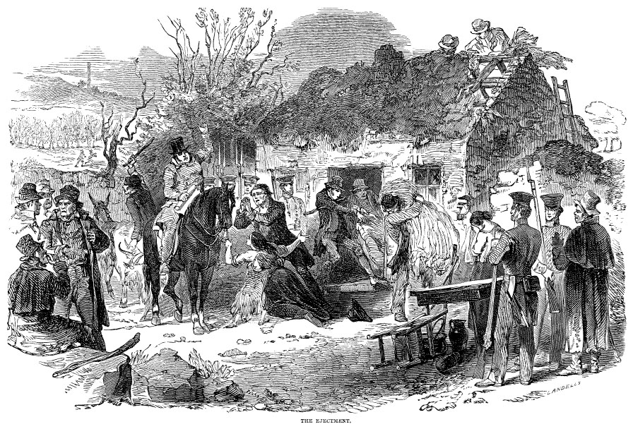 landowners-absenteeism-great-irish-famine-ireland-potato-pytophtora-infestans-1845-plague-oomycete