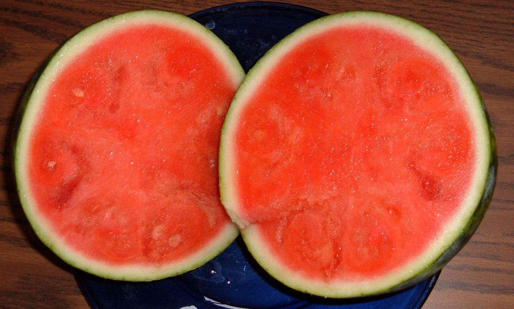 food-seedless-watermelon-genetics-transgenics-diploid-triploid-tetraploid