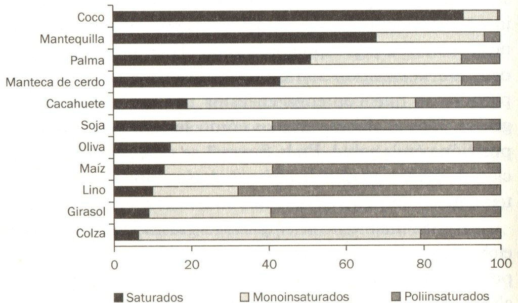 acidos-grasos-saturados-insaturados-palmitico-aceite-palma-aceitera-elaeis-guineensis-palmiste-medio-ambiente-bosques-tropicales-biodiversidad-indonesia-malasia-economia-produccion