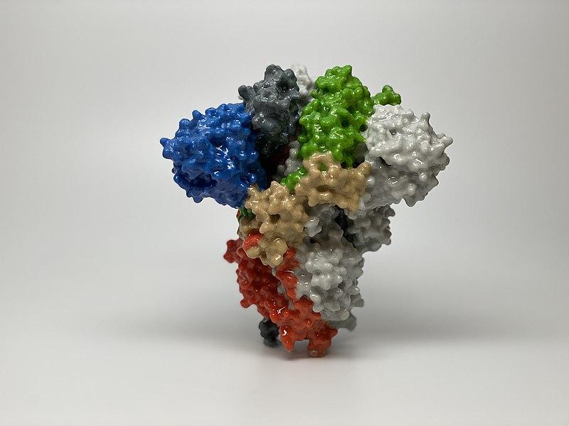 vacunas de subunidades-antigeno-proteina spike-coronavirus-sars cov 2-covid 19- virus