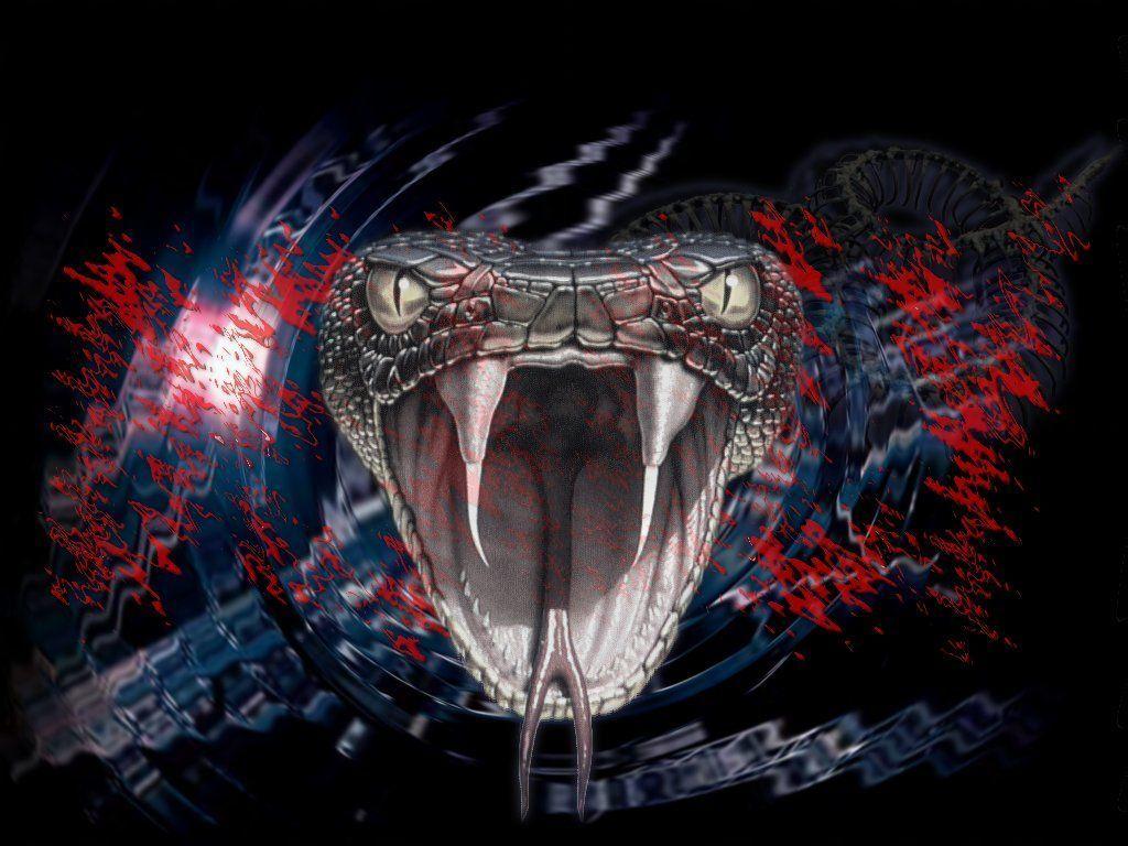 vibora-serpiente cascabel-serpiente solenoglifa-colmillo-veneno-tipos de serpiente-denticion serpientes