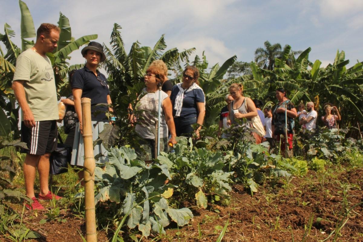 Orgânicos pra quebrada: no Extremo Sul, agricultores se juntam para vender comida sem veneno