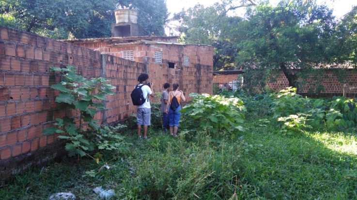 Nino, um dos entrevistados mostrando a imensidão das plantas do sítio, no Recife (Foto: Periferia em Movimento)