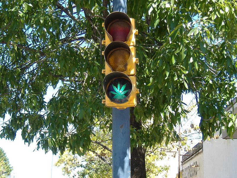 semafor cannabis