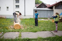 21-Branislav-Nikolic-rezidencia-Sladoled-4