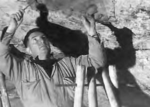 L'abbé André Glory en train de faire des relevés dans la grotte de Bara Bahau