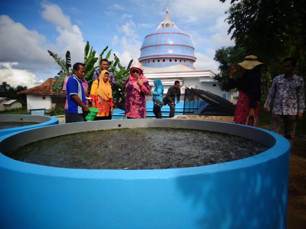 Awali Tahun 2018, Kadis Perikanan Pamekasan Kunjungi Lokasi Budidaya Lele