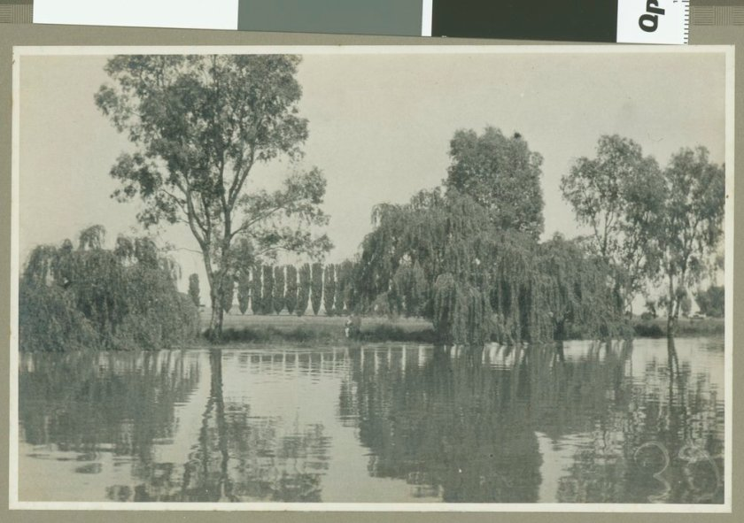 Murray River 1924 (www.slv.vic.gov.au)