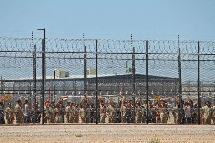 Hunger Strike at Eloy Detention Center, Arizona
