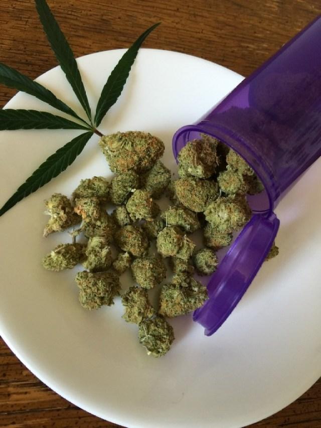 En Uruguay y Holanda existe la legalidad del consumo de marihuana. En Colorado y Washington, Estados Unidos, permiten el uso recreacional del cannabis, mientras que en Massachusetts y California, del mismo país, se permite el uso medicinal.  / FOTO SUMINISTRADA /