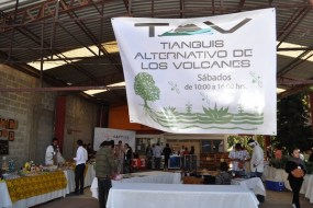 tepe tianguis alternativo5