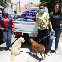 Destina Dif estatal cerca de 2 toneladas de alimento para Mascotas rescatadas