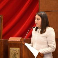 Urge diputada a impulsar Programa de Pueblos Mineros