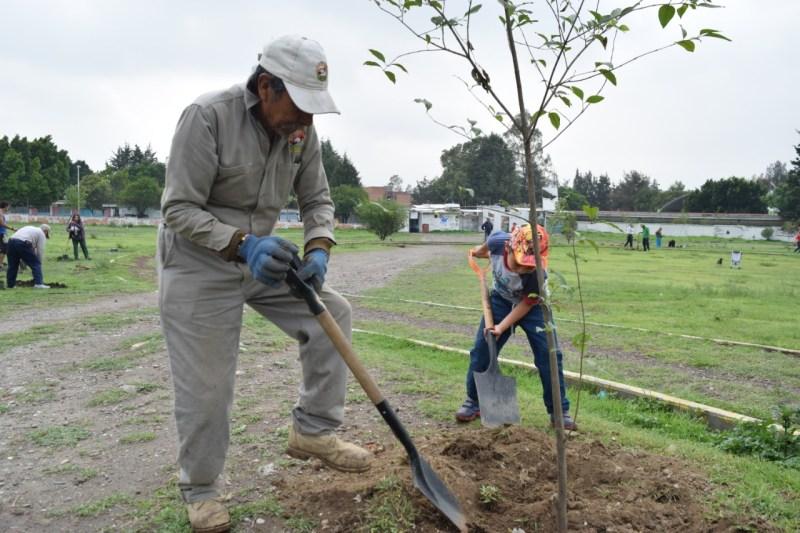 Continúa Ayuntamiento promoviendo Jornadas de Reforestación en colonias
