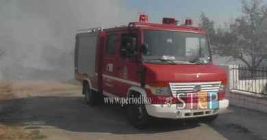 Μαζική ένστολη κινητοποίηση των πυροσβεστών Ηπείρου
