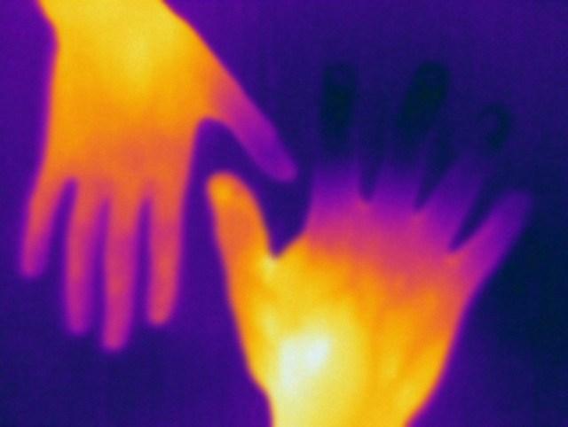 Resultado de imagen de Científicos comprueban que un ser vivo puede extraer energía de otro